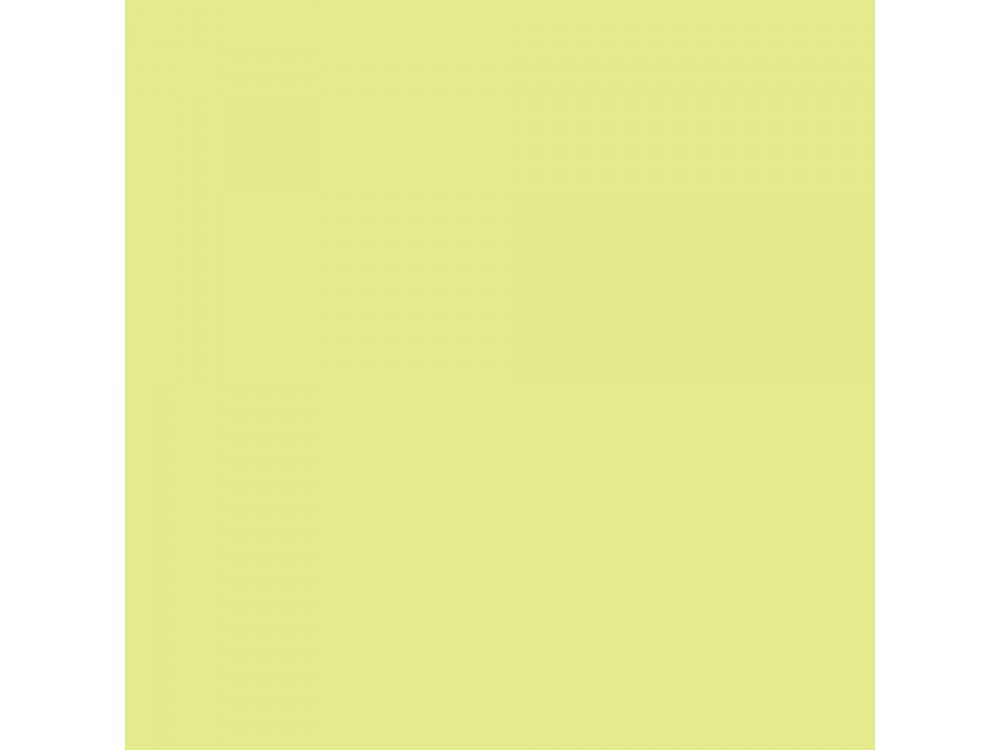 Promarker - Winsor & Newton - Lime Zest