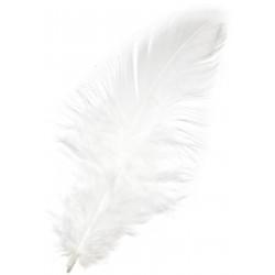 Piórka dekoracyjne, ozdobne - białe, 190 szt.