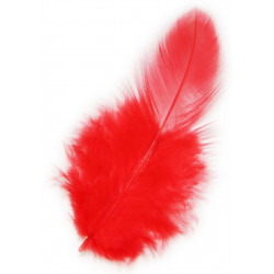 Feathers - Red
