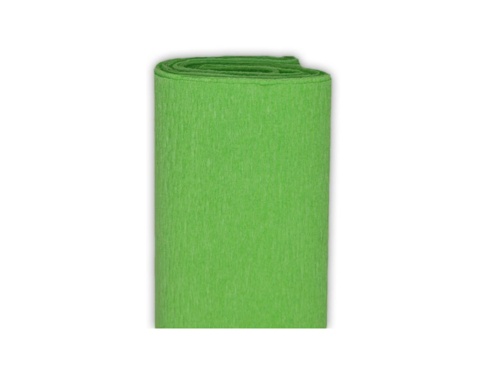 Crepe Paper 50 x 200 cm Light Green