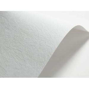 Papier ozdobny SKÓRA (134) 246 g biały