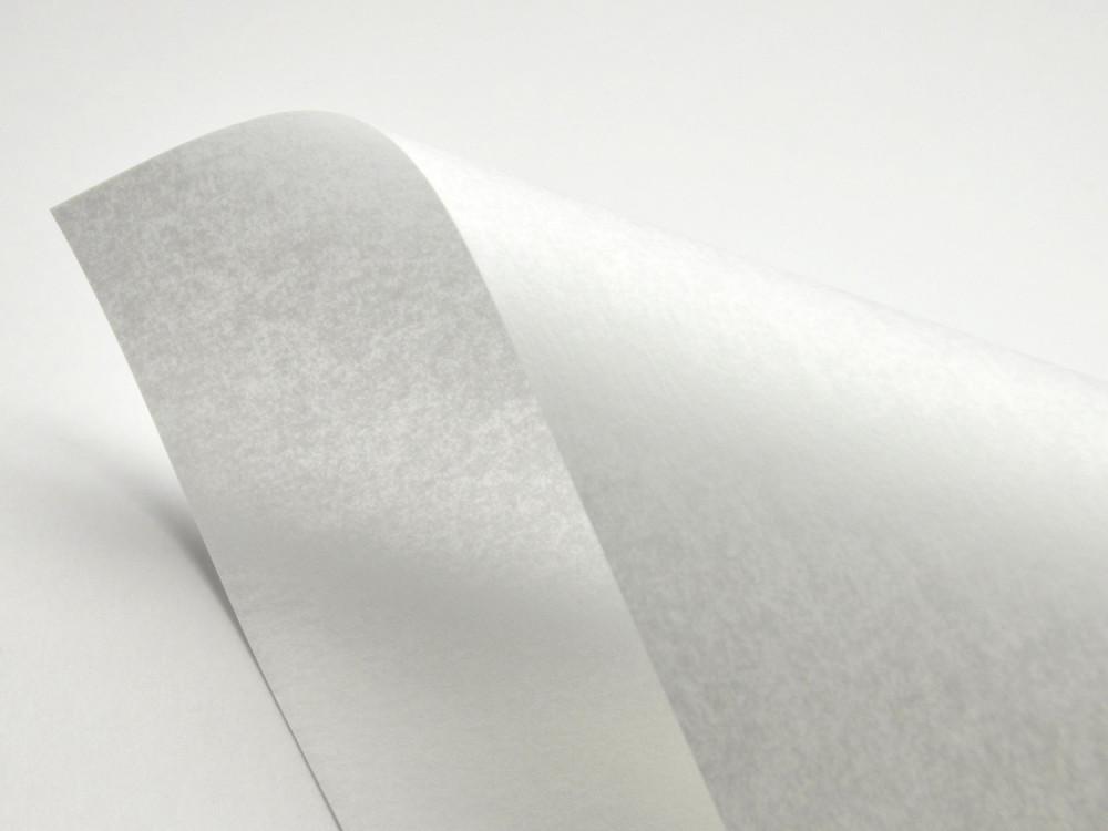 Papier Pergamenata 110g - Bianco, biały, A4, 20 ark.
