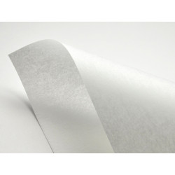 Papier Pergamenata 230g - Bianco, biały, A4, 20 ark.
