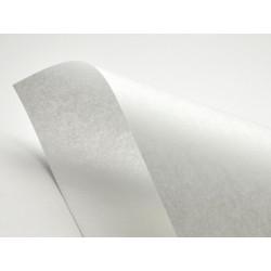 Pergamenata Paper 230g - Bianco, white, A4, 20 sheets