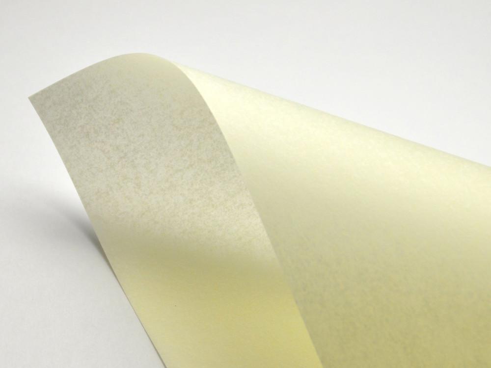 Pergamenata Paper 110g - Naturale, ecru, A4, 20 sheets