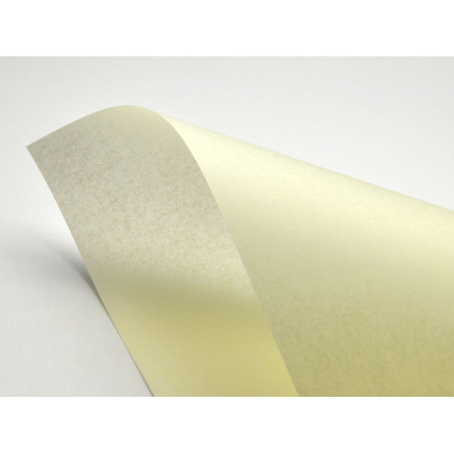 Pergamenata Paper - Naturale 230 g 20 sheets