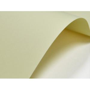 Papier ozdobny GŁADKI (002) 246 g kremowy