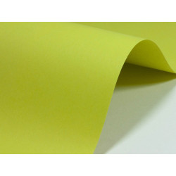 Woodstock Paper 110g - Pistachio, green, A4, 20 sheets