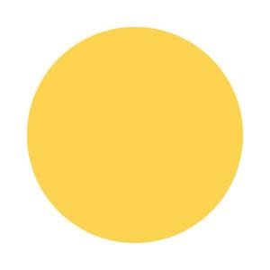 Dziurkacz ozdobny 2,5 cm - Koło 10