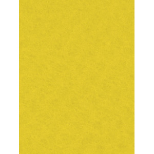Filc ozdobny 20x30 cm Maize Yellow