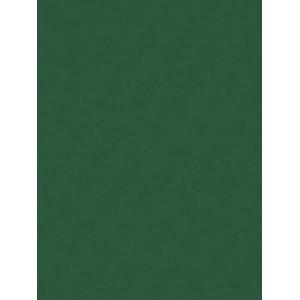 Filc ozdobny 20x30 cm Moss Green