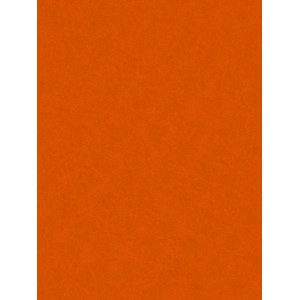 Decorative Felt 20x30 Orange