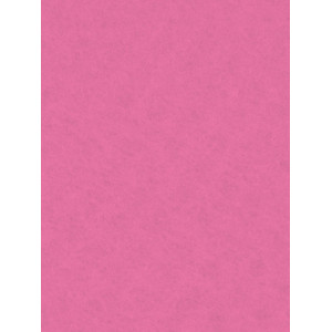 Decorative Felt 20x30 Light Pink