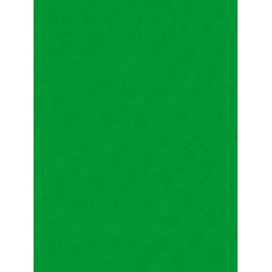 Decorative Felt 20x30 Green