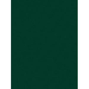 Filc ozdobny 20x30 ciemny zielony