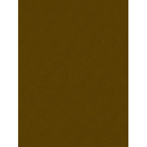Decorative Felt 20x30 Brown
