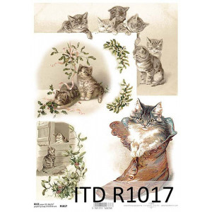 Papier ryżowy decoupage ITD R1017