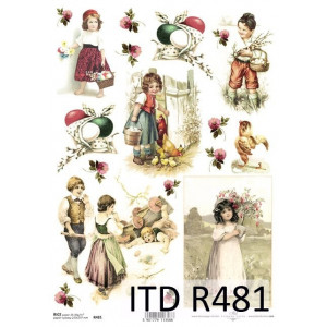 Papier ryżowy decoupage ITD R480