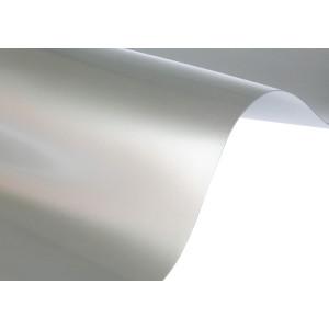 Papier Splendorlux - Argento 250G A4 20 ARK.