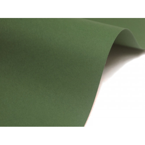 Papier Nettuno 215g A4 Verde Foresta 20 ark.