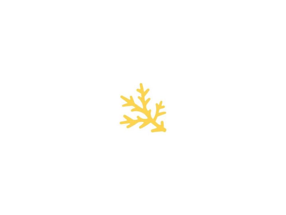 Dziurkacz ozdobny Gałązka Sosny - DpCraft - 2,5 cm