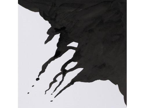 Tusz rysunkowy - Winsor & Newton - liquid indian ink, 30 ml