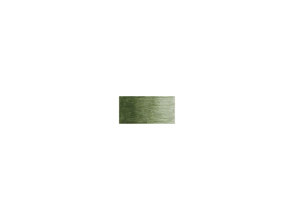 Coloursoft pencil - Derwent - Mid Green