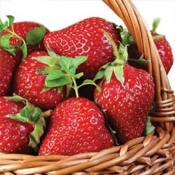 Serwetki ozdobne - Paw - Strawberry Basket, 20 szt.