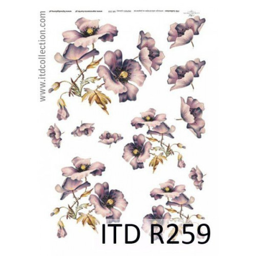Papier ryżowy decoupage ITD R259