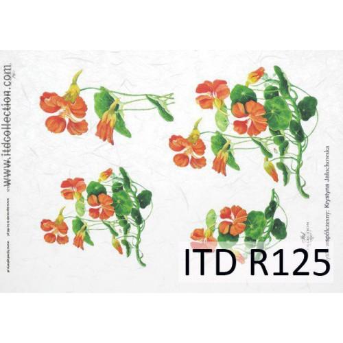 Papier ryżowy decoupage ITD R125