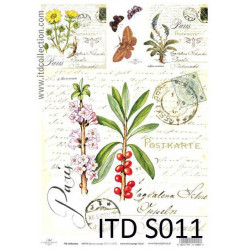 Papier do decoupage A4 - ITD Collection - soft, S011